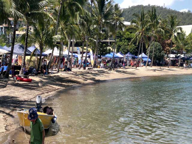 Airlie Beach Markets with palm trees and beach