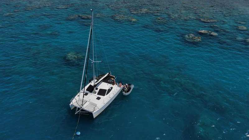41% whitsundays tour sailing