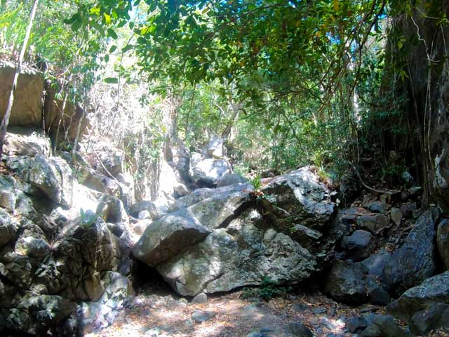 Airlie beach things to do in walking creeks